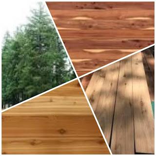 Kekurangan dan kelebihan kayu cedar untuk dimanfaatkan menjadi furnitur maupun rumah