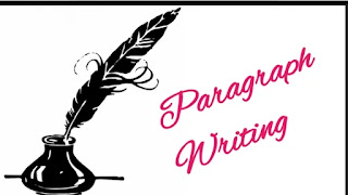Paragraph writing in English, what is paragraph writing