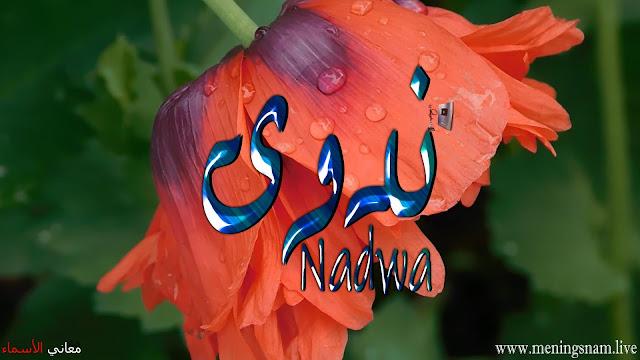 معنى اسم ندوى وصفات حاملة هذا الاسم Nadwa