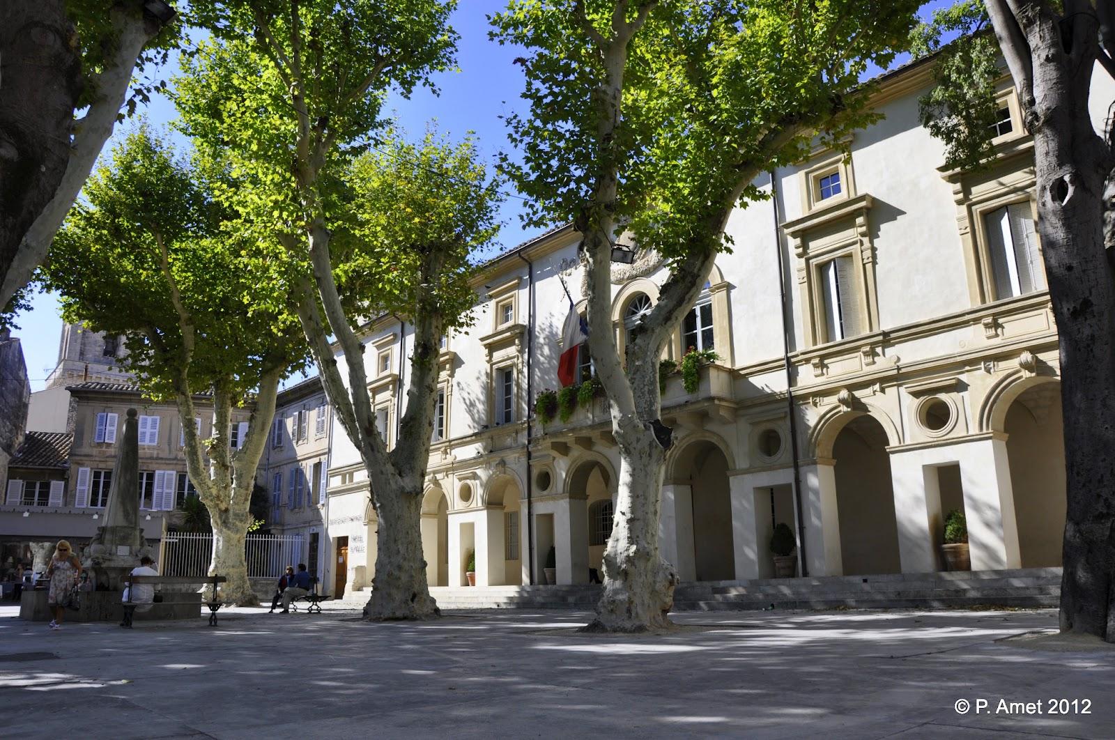 Patrick le thorois saint r my de provence provence - Piscine saint remy les chevreuses ...