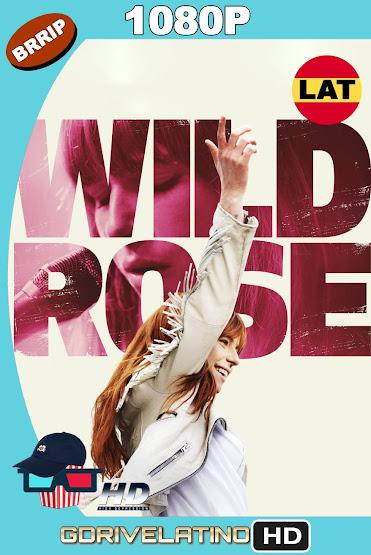 Wild Rose (2018) BRRip 1080p Latino-Ingles MKV
