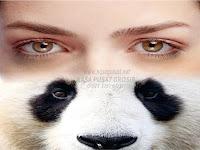 Cara Menghilangkan Mata Panda Paling Cepat dan Ampuh