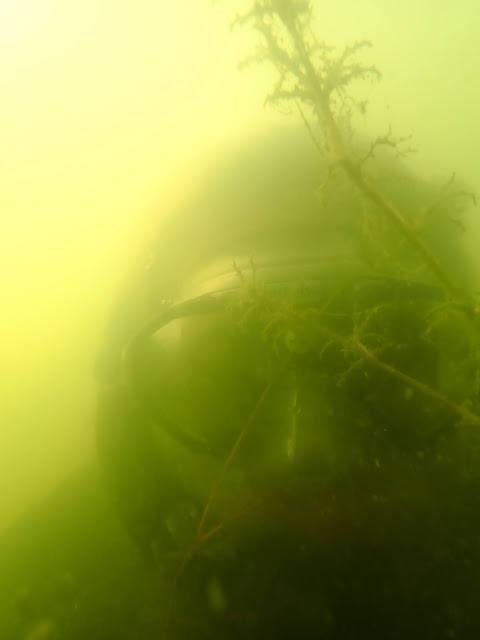 Snorklaajan naama maskin takana sameassa vedessä