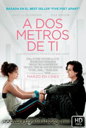 A Dos Metros De Ti 1080p Latino