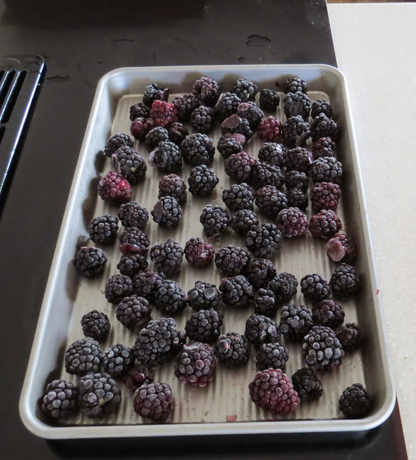 freeze berries