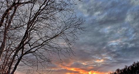 توقعات أحوال الطقس ليومه الجمعة 12 فبراير