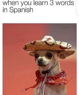 Language Meme