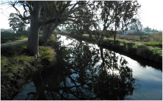 Η Οδηγία-πλαίσιο για τα νερά και η διαχείριση του Ερασίνου Ποταμού Ν. Κίου ως Περιφερειακού Πάρκου