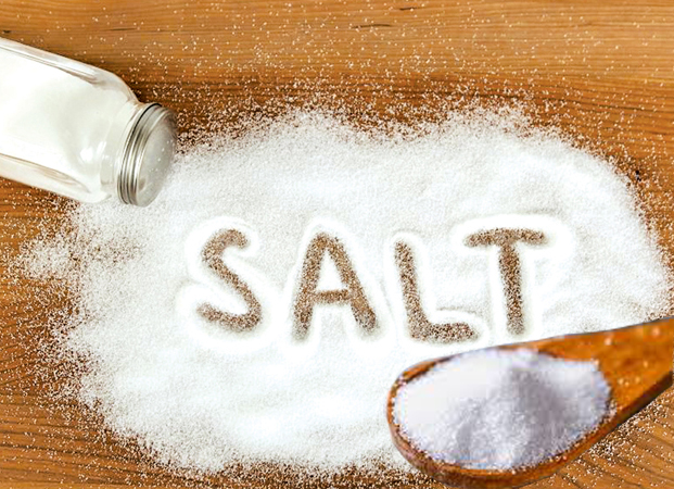 The price of salt per kg