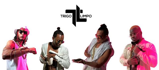 Trigo Limpo 2019