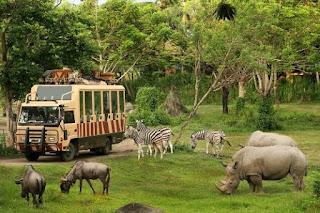 http://www.teluklove.com/2017/02/pesona-keindahan-wisata-bali-safari-dan.html