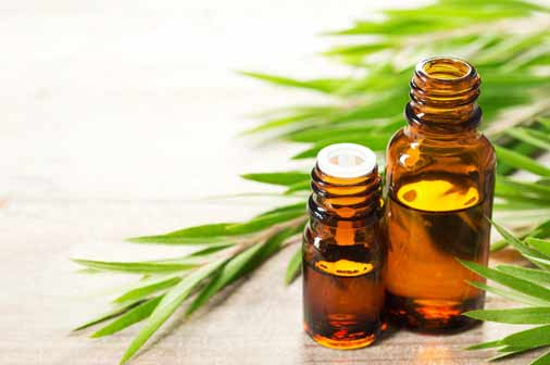 Tea Tree Oil- How To Get Rid Of Back Acne Scars