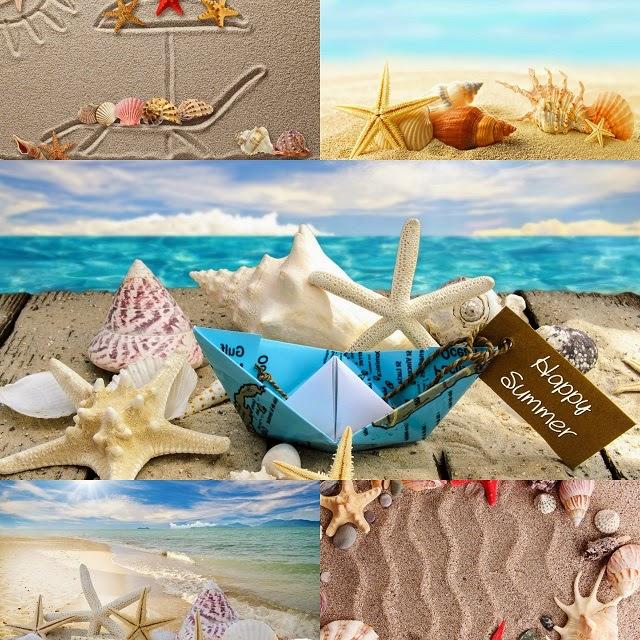 Estrellas de Mar y Caracoles