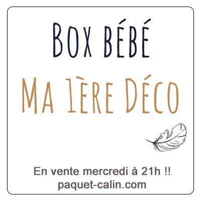 http://www.paquet-calin.com/boutique/box-bebe-deco/