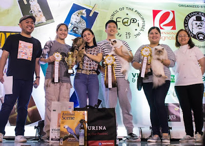 Winners of Meowcon Manila 2019 with their cats showing their cat show award ribbons