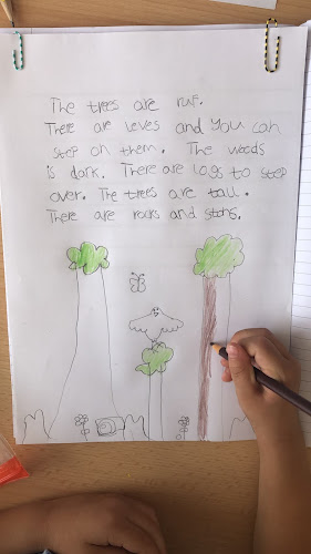 Sophie wrote her Woodland description ready for our display!