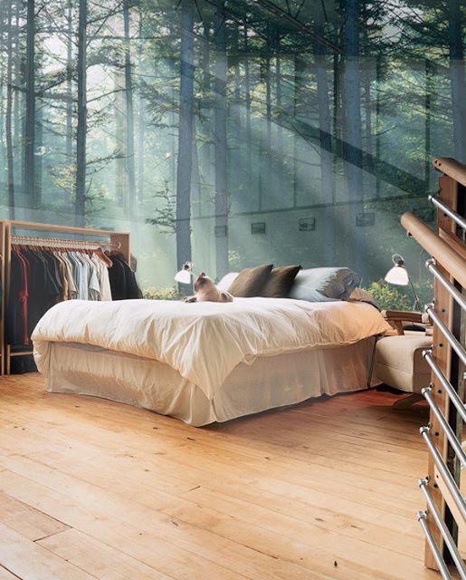 natur tapet skog fototapet trädstammar fonvägg sovrum