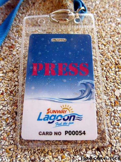 media passes to Aladdin The Musical