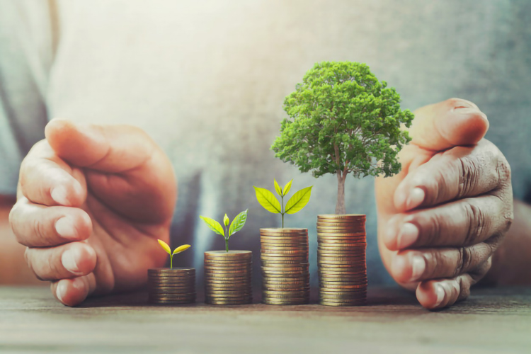 Expect The Best When Hiring Best Wealth Management Firms