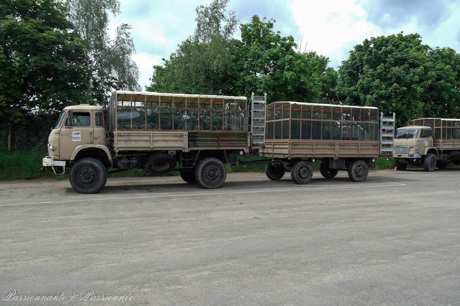 notre transport pour le safari