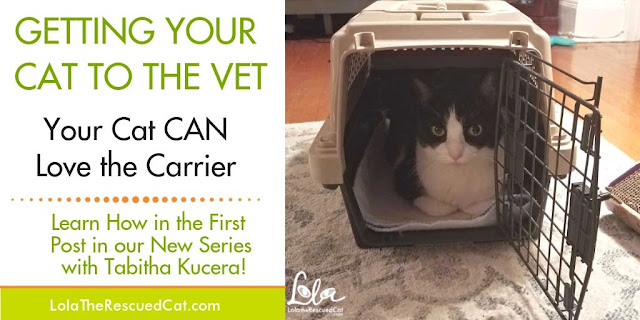 Fear Free|carrier training
