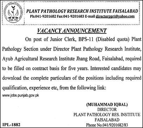 Plant Pathology Research Institute Agriculture Research Jobs for Disable people, 2018 Latest Vacancies