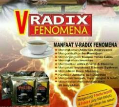 V-RADIX FENOMENA
