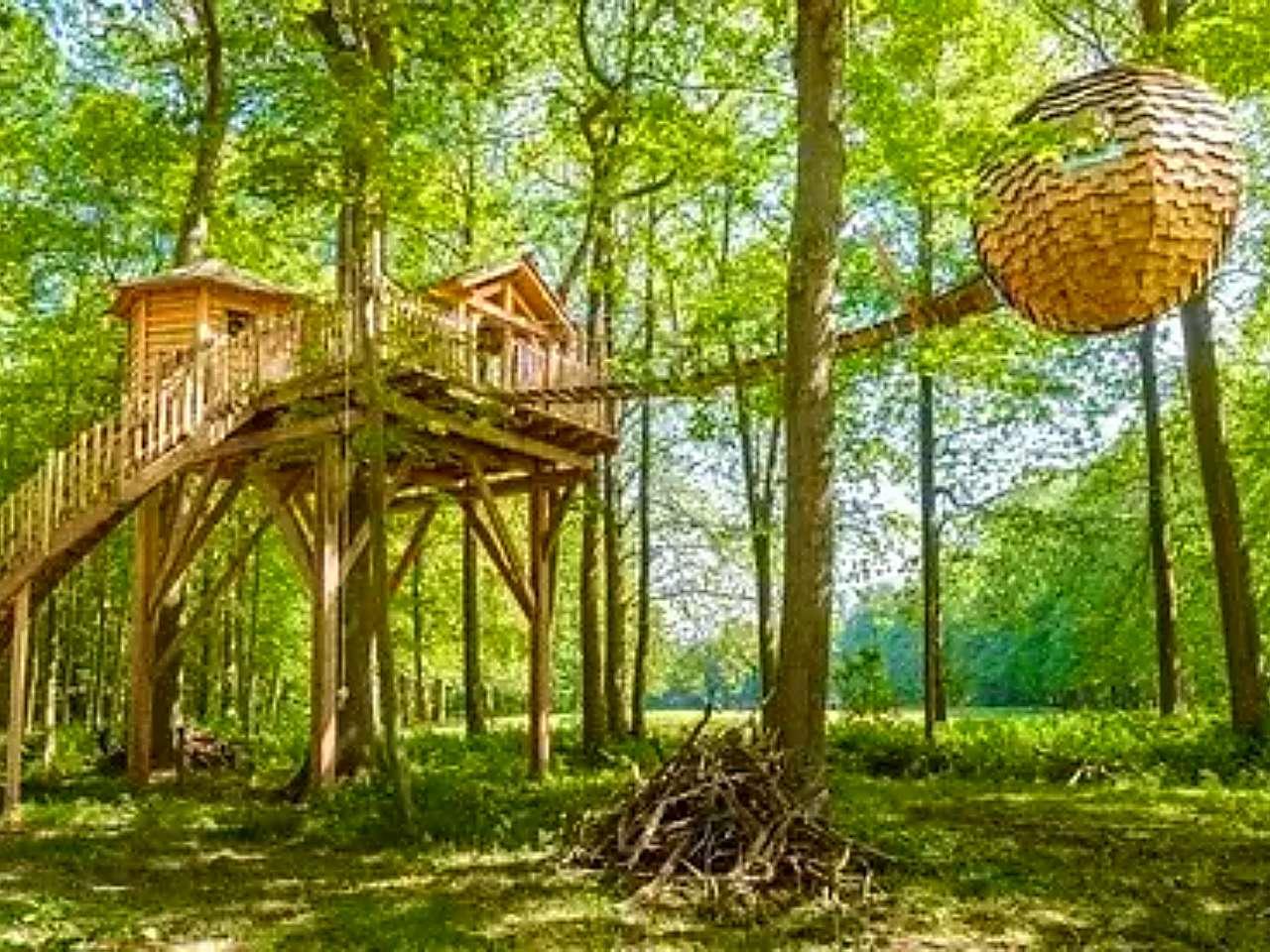 rumah-pohon-modern.jpg