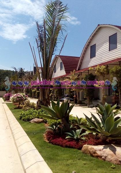 foto sekitar hotel java paradise karimunjawa
