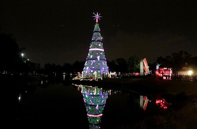 Árvore de Natal Parque Ibirapuera