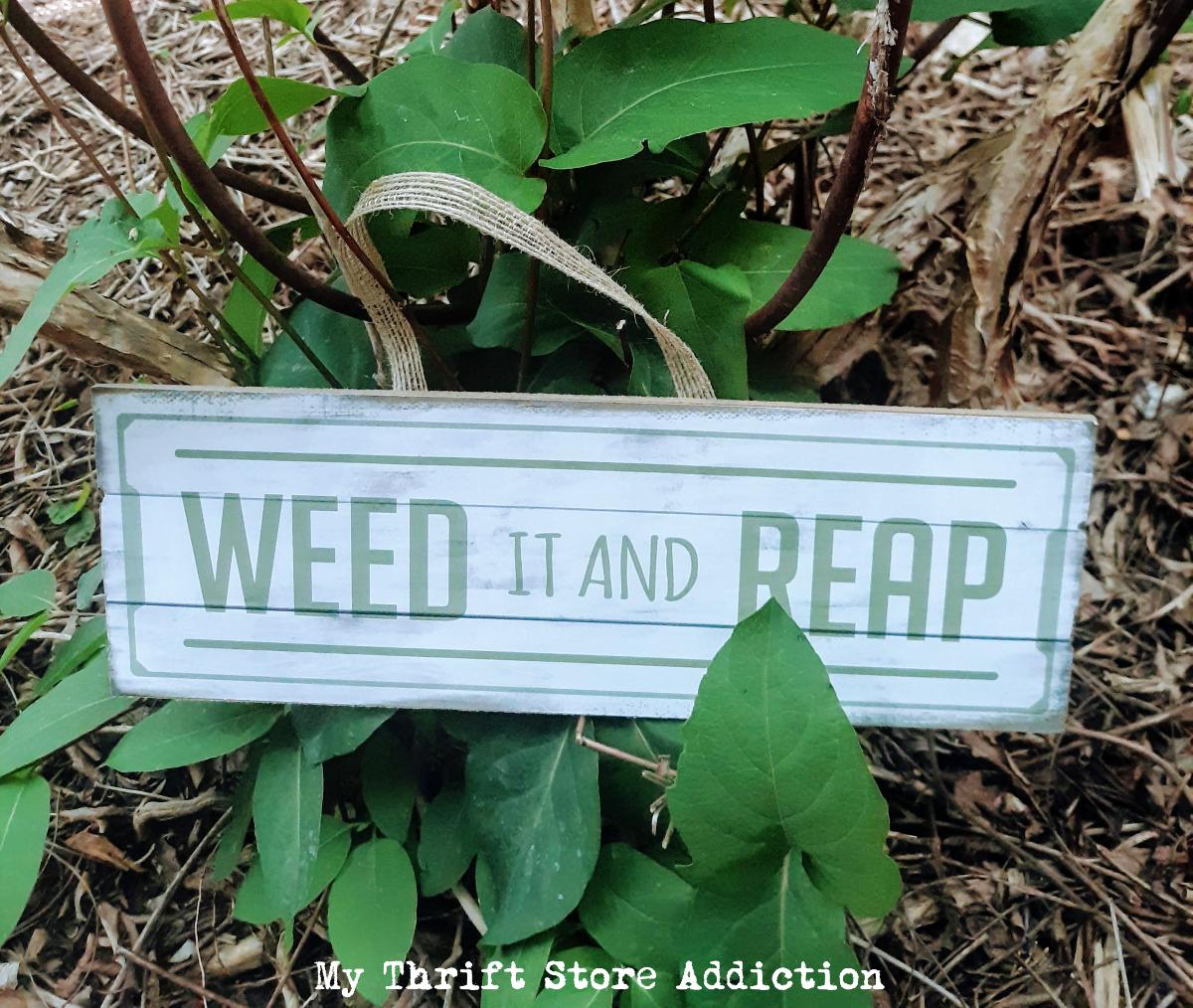 funny garden signs