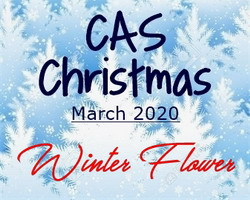 Christmas Flowers 2020 Marcia's Stampin' Pad: CAS Christmas March 2020   Winter Flower