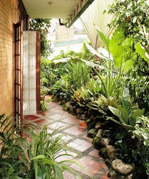 Rental tanaman dan bunga Surabaya  Taman minimalis
