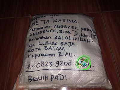 Benih pesanan METTA KASINA Batam, Kep. Riau  (Setelah Packing)