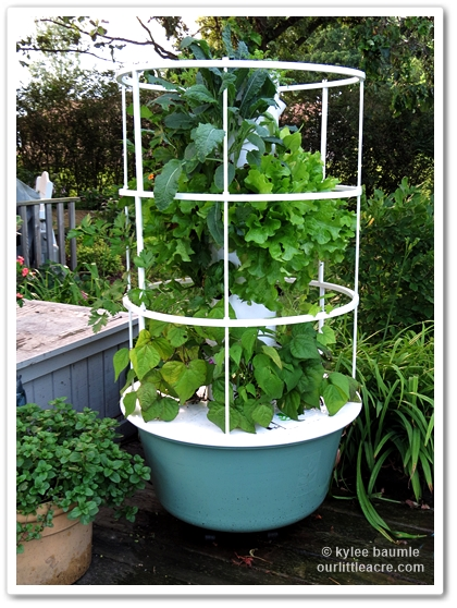 what lush and beautiful plants - Tower Garden