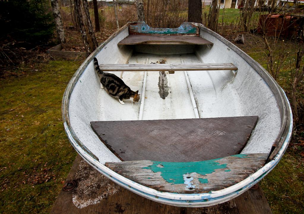 plugg till båt
