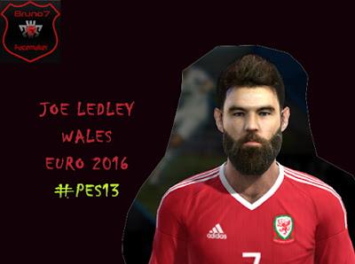 Joe Ledley - Wales NT