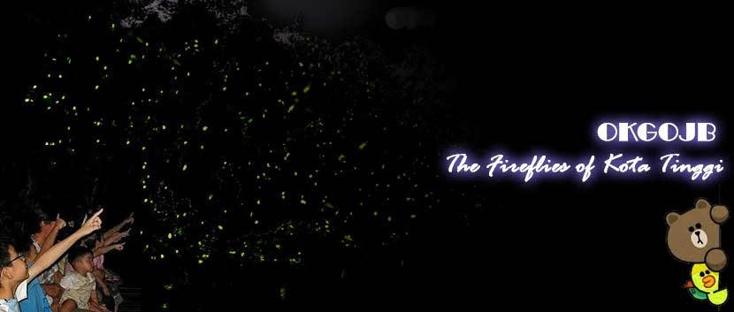 Kota Tinggi Firefly trip