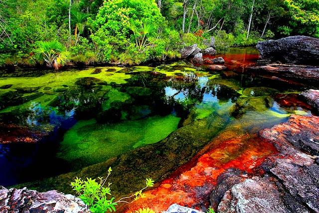 Fakta Unik Tentang Sungai Lima Warna di Dunia