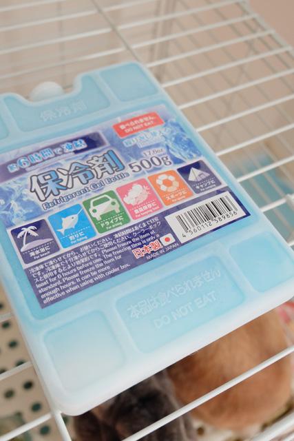 夏のうさぎの暑さ対策には保冷剤併用がコスパ良し
