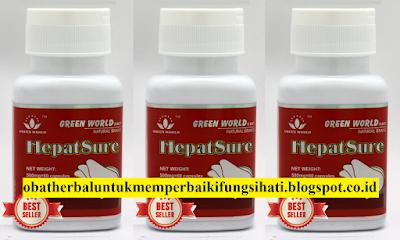 Obat Herbal Untuk Memperbaiki Fungsi Hati ( Liver )