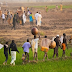 NIGERIA: Abuja provides 3,000 hectares of irrigated land to farmers in Jigawa