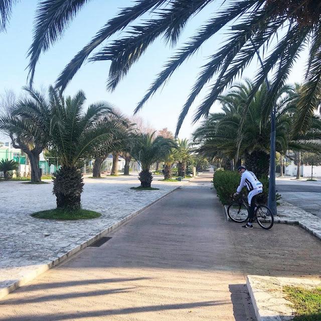 ciclabile-riviera-delle-palme