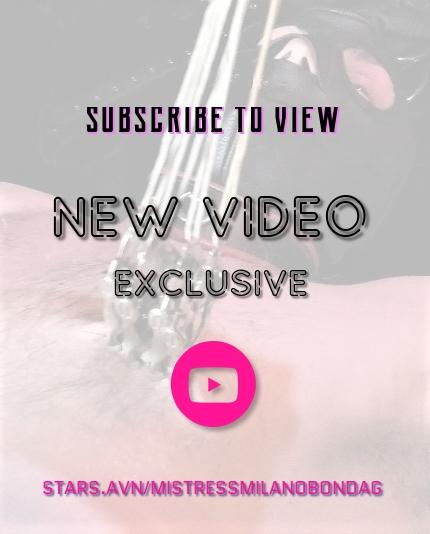 avn stars videos