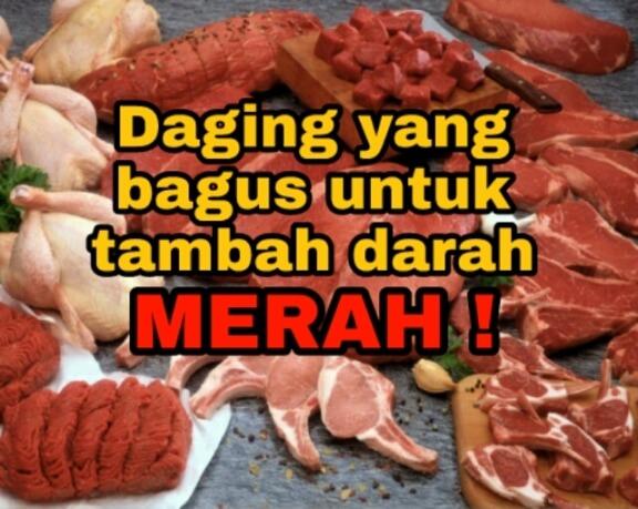 daging untuk tambah darah merah ibu mengandung