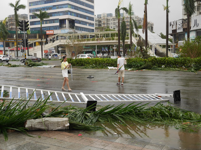 people walking on Yingbin South Road in Zhuhai after Typhoon Hato