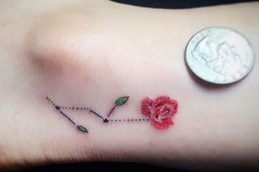 Micro Aumentou, e a Constelação de Tatuagem