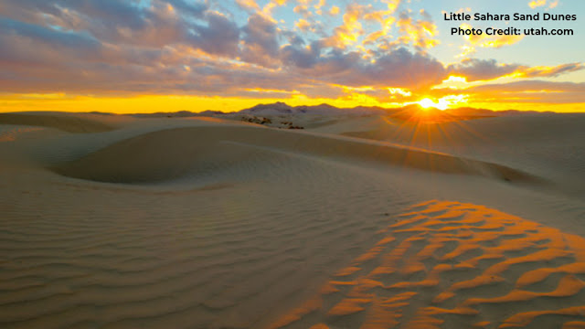 ATV's lined up behind rippled sand dunes in the sunset