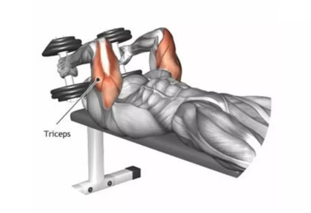triceps dumbbell extension
