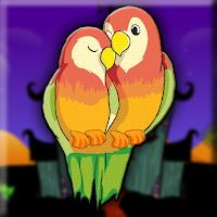 G2J Fischer's Lovebird Es…